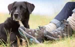 Doggo Outdoor-Schuhe
