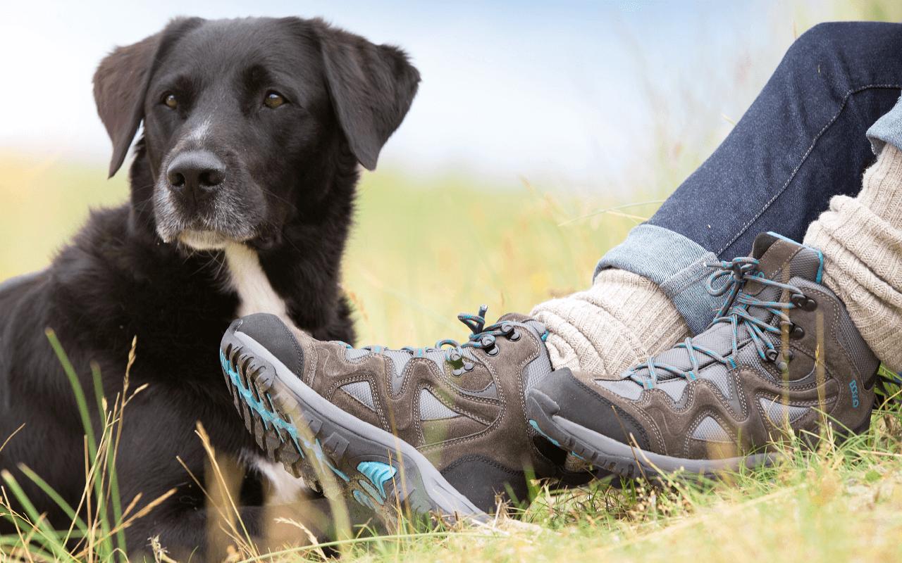 Doggo Schuhe für Hundehalter