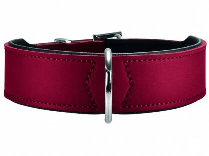 Hunter Basic Hundehalsband rot/schwarz